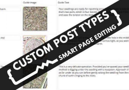 custom post types explained